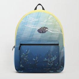Aerial Backpack