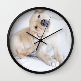 A sweet photograph of a baby Labrador dog Wall Clock