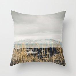 View on Esja Throw Pillow