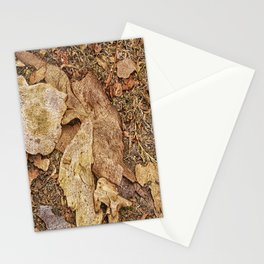 Bark on the forest floor Stationery Cards
