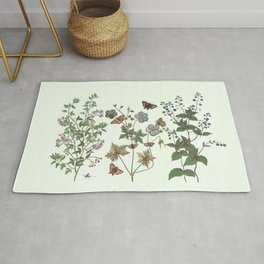 The fragility of living - botanical illustration Rug