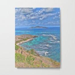 Buck Island from the East End - St. Croix, U.S. Virgin Islands, 2011 Metal Print