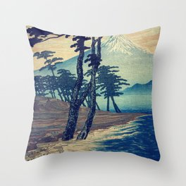 Late swimming after the floods in Hainsay Throw Pillow