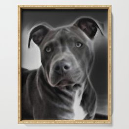 Pit Bull lover, a portrait of a beautiful Blue Nose Pit Bull Serving Tray