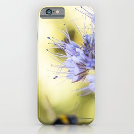 Purple flowers close-up with green background and a bumblebee iPhone Case