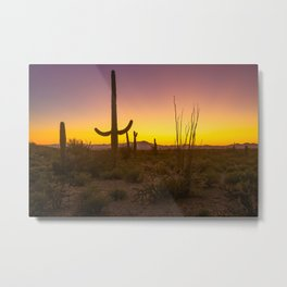 Spirit of the Southwest - Saguaro Cactus and Desert Plant Life in Warm Glow of Arizona Sunset Metal Print