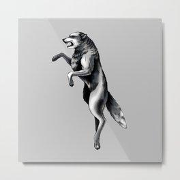 Fierce Wolf Metal Print