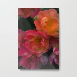 Rose 396 Metal Print