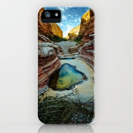 Ernst Canyon, Big Bend, Texas iPhone Case