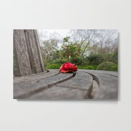 Lone Red Peony atop a Bench Metal Print
