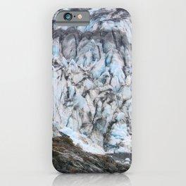 Glacier Bay National Park Alaska Wilderness iPhone Case