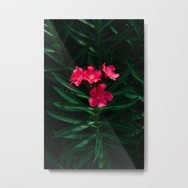 Florida Blooms Metal Print