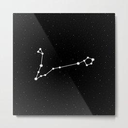 Pisces Star Sign Night Sky Metal Print