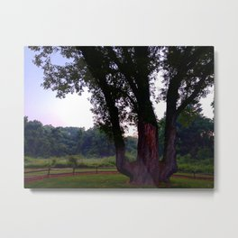 Signal Tree Sunrise Metal Print