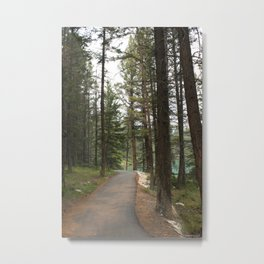 a smooth path Metal Print