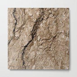 Tree Bark B Metal Print