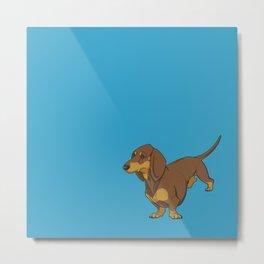 Chocolate & Tan Smooth Dachshund on Blue Metal Print