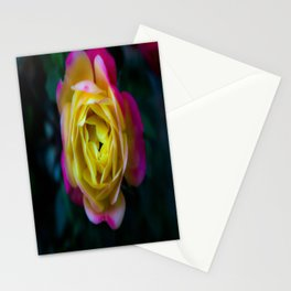 Foggy Rainbow Rose Stationery Cards