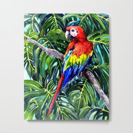 Scarlet Macaw in Rainforest Metal Print