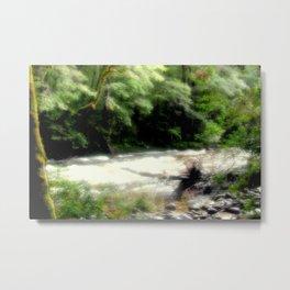Franklin - Gordon River Metal Print