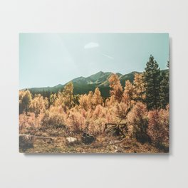 Rustic Autumn Beauty // Golden Yellow and Orange Leaves in the Forest Metal Print