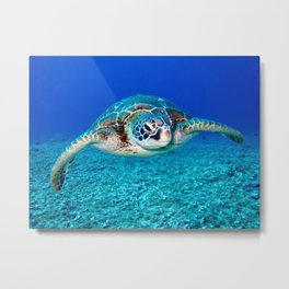 Tropical Swimming Sea Turtle Metal Print