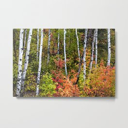 Alpine Loop Utah Metal Print
