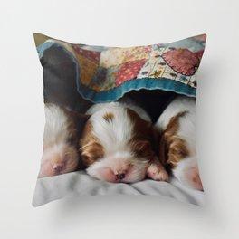 Three Newborn Puppies Snoozing Throw Pillow
