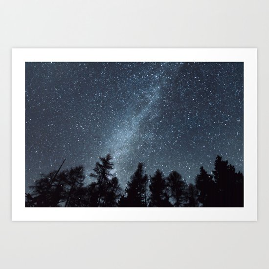 Milky Way in the Woods | Nature and Landscape Photography by martacors