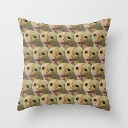 Coughing Cat Meme Pattern Throw Pillow
