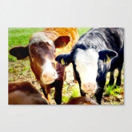 Calf Art For Animal Lover Canvas Print