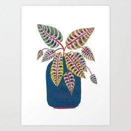 Potted Prayer Plant Art Print