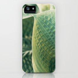 Hosta #1 iPhone Case