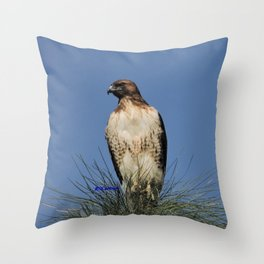 Red-Tailed Hawk on Watch at Foothill and B Street Throw Pillow