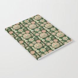 Ernst Haeckel Discomedusae Jellyfish Notebook