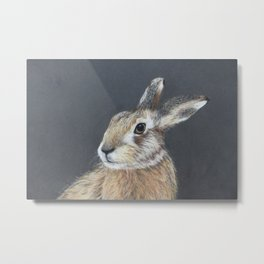 The Hares Stare Metal Print
