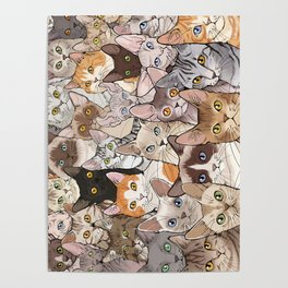 A lot of Cats Poster