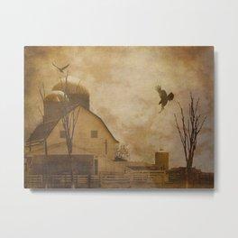 Rustic Country Barn Bird Modern Farmhouse Modern Cottage Art A574 Metal Print
