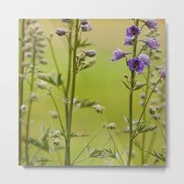 Purple Delphinium Flower Metal Print