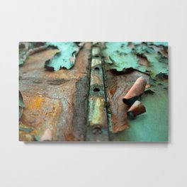 Colours of Transience Metal Print