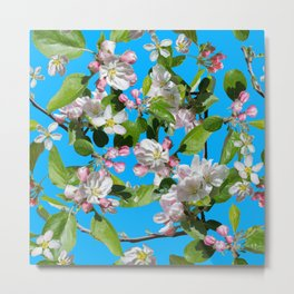 Full bloom blossom Metal Print