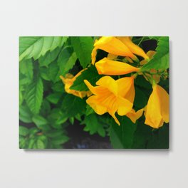 Sunny Flower Metal Print