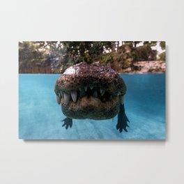 Jurassic Smile Metal Print