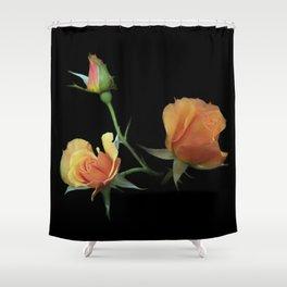 flowers on black - 3 orange rosebuds Shower Curtain