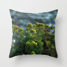 Succulent Wildflowers by the Ocean Throw Pillow