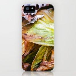 Hosta 4 iPhone Case
