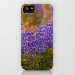 US Department of Agriculture - Lupine iPhone Case