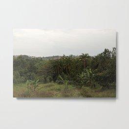 Jungles of Uganda Metal Print