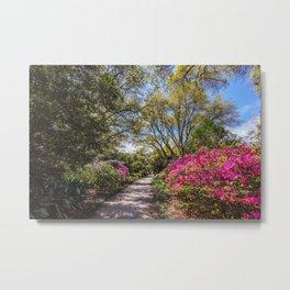 Garden Walk Metal Print