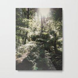 Forest Light Metal Print